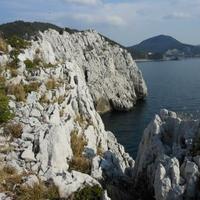 白崎海洋公園の写真