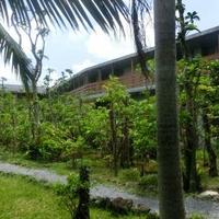 西表島ジャングルホテルパイヌマヤの写真