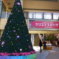 三井アウトレットパーク 幕張の写真