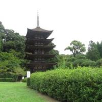 香山公園の写真