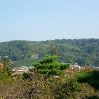 卯辰山公園の写真