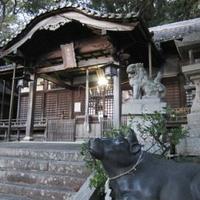 中言神社の写真