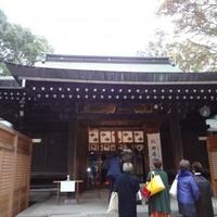 氷川神社の写真
