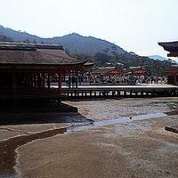 厳島神社の写真