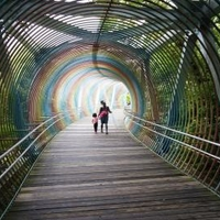 播磨中央公園の写真