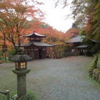 愛宕念仏寺の写真