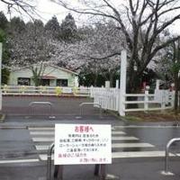 成田ゆめ牧場の写真