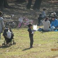 千葉県立柏の葉公園の写真