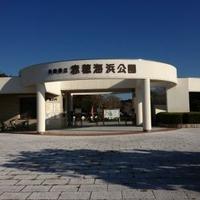 兵庫県立赤穂海浜公園の写真