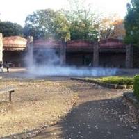 大森貝塚遺跡庭園の写真