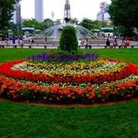札幌大通公園の写真
