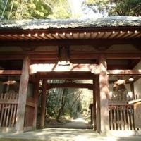 勝持寺(花の寺)の写真