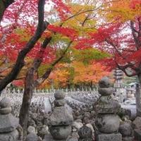 化野念仏寺の写真