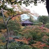 銀閣寺 慈照寺の写真