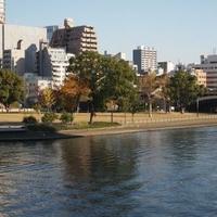 中之島公園の写真