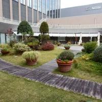 神戸国際会館SOLの写真