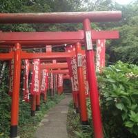 佐助稲荷神社の写真