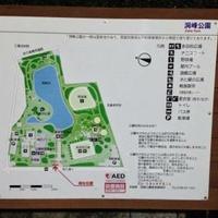 洞峰公園の写真