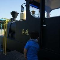 府営浜寺公園の写真