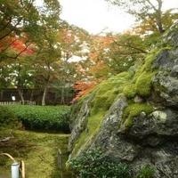 大亀山 宝厳院の写真