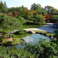 仁和寺の写真
