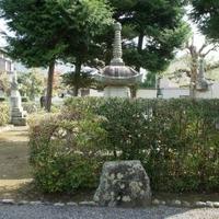 旧嵯峨御所 大本山大覚寺の写真