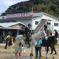 カナディアンキャンプ乗馬クラブの写真
