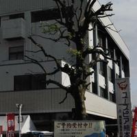 ユースピア熊本(県青年会館)の写真
