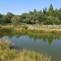 高鍋湿原の写真