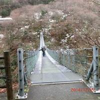 竜宮崖公園の写真