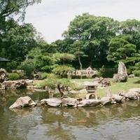 天赦公園の写真