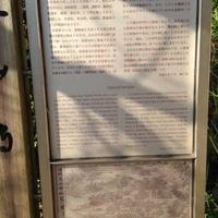 太山寺の写真