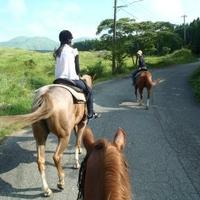 阿蘇ハイランド乗馬クラブの写真