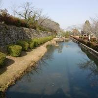 旭ヶ岡公園の写真