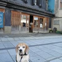 山本有三ふるさと記念館の写真