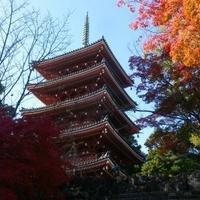 竹林寺の写真