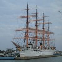 みなとオアシス海王丸パークの写真
