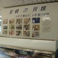宮崎県立青島亜熱帯植物園の写真