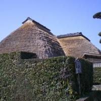 知覧武家屋敷庭園の写真