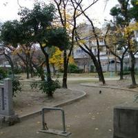 高津公園の写真