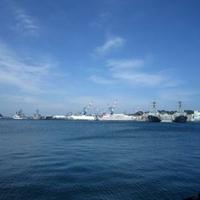 横須賀市ヴェルニー公園の写真