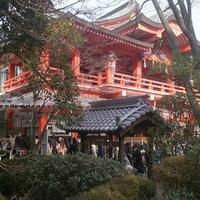 千葉神社の写真