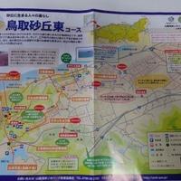 鳥取砂丘オアシス広場の写真