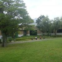 島根県立宍道湖自然館 ゴビウスの写真