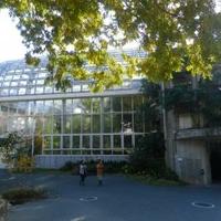 高知県立牧野植物園の写真