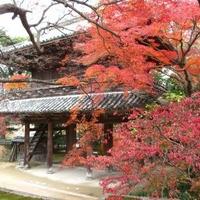 功山寺の写真