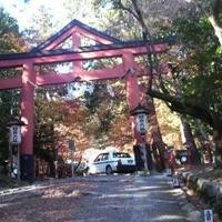 日吉大社の写真