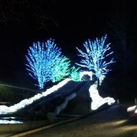 甲州市勝沼 ぶどうの丘の写真