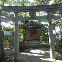 浦戸城跡の写真