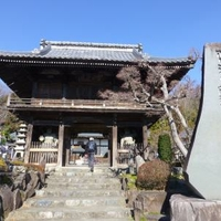 正龍寺の写真